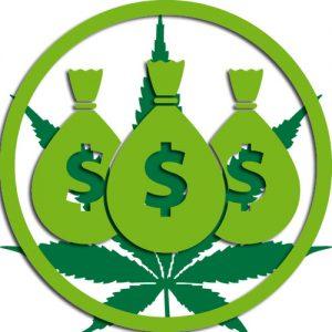 biznes-narkotykowy-marihuana-0007782