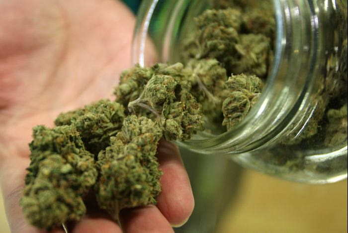 Marihuana dzieli lewicę, GrowEnter
