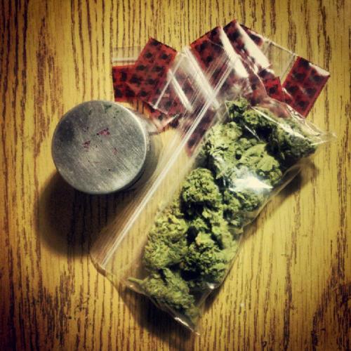 Posiadanie narkotyków na własny użytek nie będzie karane, GrowEnter