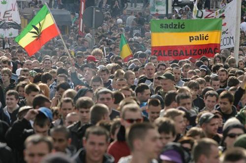 Sadzić Palić Zalegalizować czyli Marsz Wyzwolenia Konopi 2014, GrowEnter