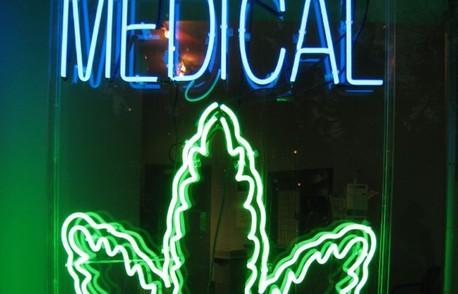 Zielone złoto, czyli czy warto inwestować w marihuanę?, GrowEnter