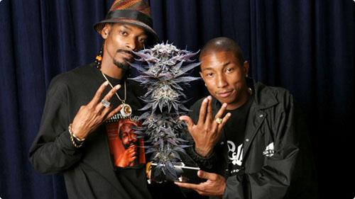 Snoop Dogg i Pharell łączą siły w reklamie marihuany!, GrowEnter