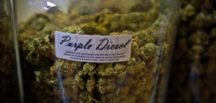 5 Powodów Dlaczego Dostęp do Medycznej Marihuany Jest Ograniczony, GrowEnter
