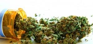 Korupcja w Polskim systemie lecznictwa czy strach koncernów farmaceutycznych? Kto w Polsce boi się medycznej marihuany?, GrowEnter