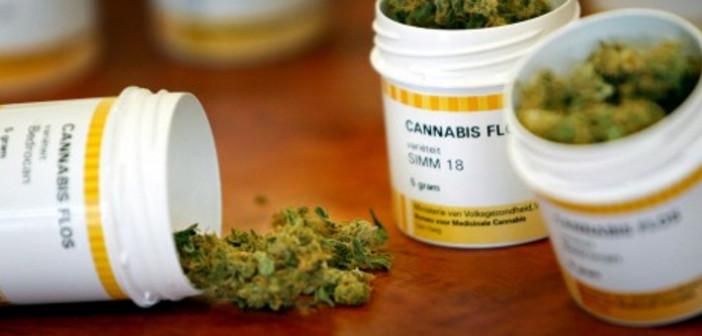 Sondaż: 78% Polaków za legalizacją medycznej marihuany, GrowEnter