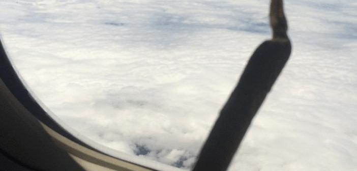 Mieszkańcy stanu Oregon mogą legalnie latać samolotem z marihuaną, GrowEnter