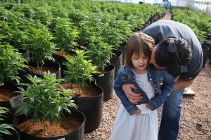 Najmłodsi pacjenci medycznej marihuany, GrowEnter