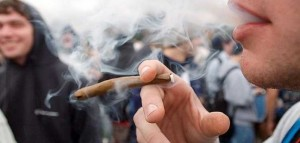Waszyngton: Legalizacja marihuany nie zwiększyła jej użycia wśród młodzieży, GrowEnter