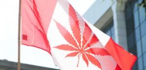 Nowy rząd Kanady od razu chce pełnej legalizacji marihuany, GrowEnter