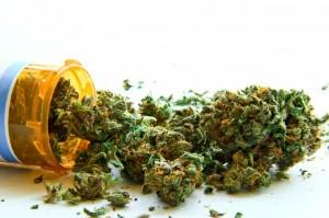 Marihuana medyczna: więcej niż THC i CBD, GrowEnter