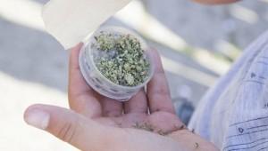 Posiadanie marihuany, kokainy i heroiny może być wkrótce legalne w Irlandii, GrowEnter