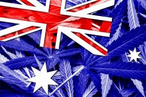 Australia zalegalizowała medyczną marihuanę, GrowEnter