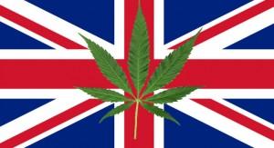 Brytyjska policja nie będzie dłużej ścigać za posiadanie i uprawę marihuany, GrowEnter