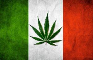 Włoski Parlament będzie debatował nad legalizacją marihuany, sondy wskazują na 70% poparcie, GrowEnter