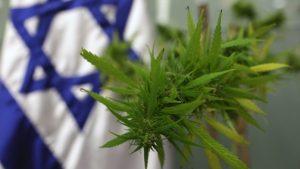 Izrael przygotowuje się do legalizacji marihuany w celach rekreacyjnych, GrowEnter
