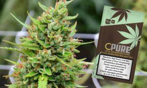 CPure: Legalny cannabis ze Szwajcarii, GrowEnter