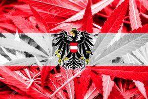Coraz więcej przestępstw związanych z cannabisem w Vorarlberg w zachodniej części Austrii, GrowEnter