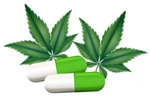 Lek ratujący życie   cannabis, GrowEnter