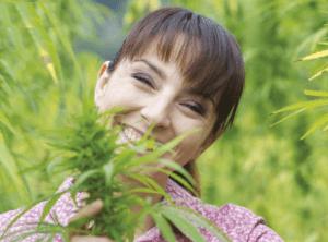 Zażywanie CBD w domu   instrukcja i dawkowanie, GrowEnter