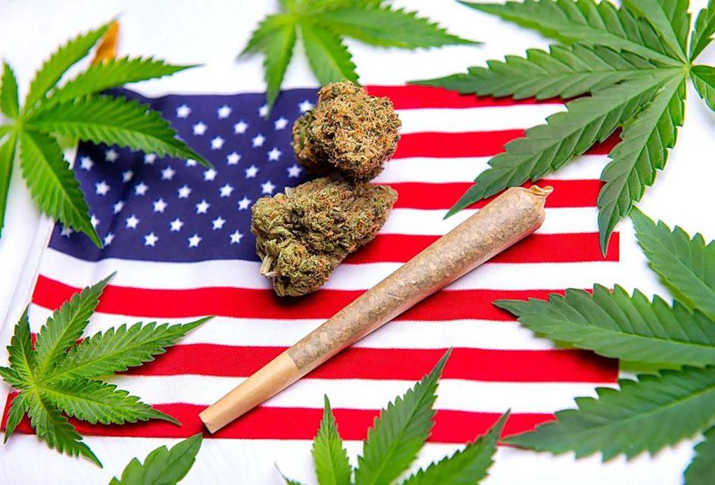 Co się Dzieje w Waszyngtonie Rok po Legalizacji Marihuany, GrowEnter