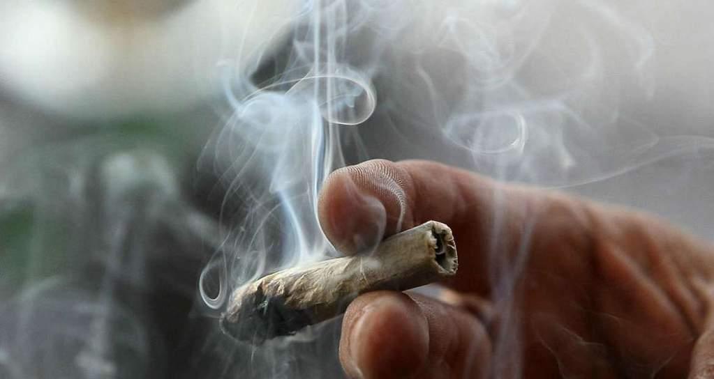 Działanie Marihuany, GrowEnter