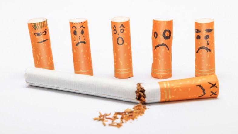 Spożywanie Marihuany Utrudnia Rzucenie Palenia Tytoniu, GrowEnter