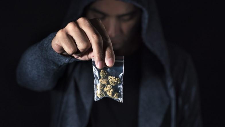 Uwaga Na Susz CBD Zawierający Syntetyczne Cannabinoidy, GrowEnter